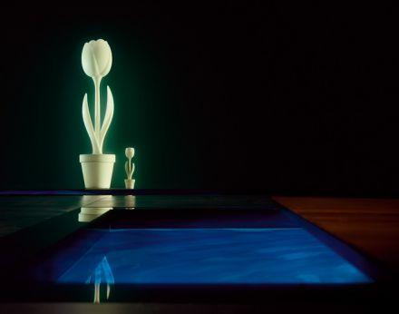 Myyour Tulip XL met verlichting