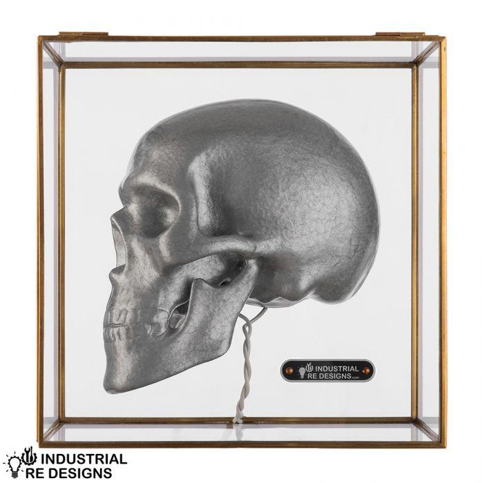 Tafellamp schedel in glazen box